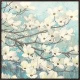 Dogwood Blossoms II Framed Canvas Print by James Wiens
