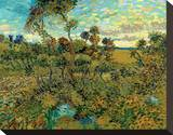 Sunset at Montmajour Stretched Canvas Print by Vincent van Gogh