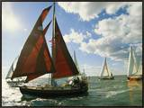 Red-Sailed Sailboat and Others in a Race on the Chesapeake Bay Framed Canvas Print by Skip Brown