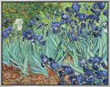 Irises, 1889 Framed Canvas Print by Vincent van Gogh