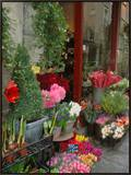 Florist in Ile St. Louis, Paris, France Framed Canvas Print by Lisa S. Engelbrecht