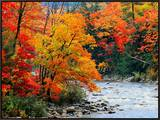 Stream in Autumn Woods Framed Canvas Print by Jack Hollingsworth