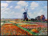Monet: Tulip Fields, 1886 Framed Canvas Print by Claude Monet