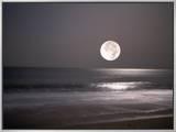 Full Moon Framed Canvas Print by Mitch Diamond