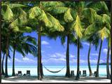 Aitutaki, Cook Islands, New Zealand Framed Canvas Print by Peter Adams
