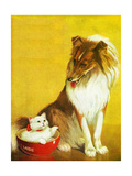 Collie and Kitten - Child Life Giclee Print by Jack Murray