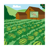 Watermelon Mix-Up - Turtle Giclee Print by  Dawn Au