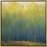 Deep Woods in Summer Framed Canvas Print by Teri Jonas