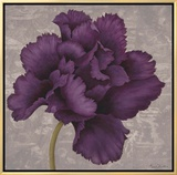 Black Plum 1 Framed Canvas Print by Ariane Martine