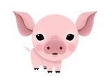 Baby Animals - Pig Giclée-Druck von Sheree Boyd