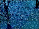 Autumn Tree in Blue, Green, and Purple Framed Canvas Print by Robert Cattan