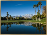 Pond in a Golf Course, Desert Princess Country Club, Palm Springs, Riverside County, California Framed Canvas Print