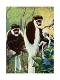 Monkeys - Child Life Giclee Print by Jack Murray
