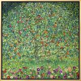 Apple Tree, 1912 額入りキャンバスプリント : グスタフ・クリムト