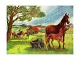 Horses - Jack & Jill Giclee Print by Virginia Mann