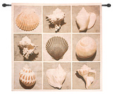 Weathered Shell Sample Wall Tapestry