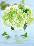 Petit bouquet romantique : Fleur d'hy Prints by  Beyler