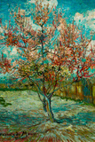 Vincent Van Gogh Pink Peach Trees Souvenir de Mauve Poster Prints by Vincent van Gogh