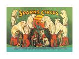Sparks Circus Lámina en metal
