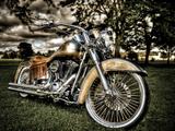 Harley Kunst på metall av Stephen Arens
