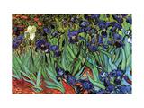 Lirios Arte sobre metal por Vincent van Gogh
