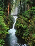 Sol Duc Falls Cascading Through Rainforest Metal Print by Mark Karrass