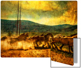 The Old Wild Stampede Metal Print by Trey Ratcliff