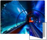 The Secret Underwater Passage Metal Print by Trey Ratcliff