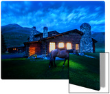 An Evening Stroll Around the Cabin Metal Print by Trey Ratcliff