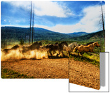 Stampede of the Wild Horses Metal Print by Trey Ratcliff