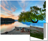 Tree at the Serene Lake Metal Print by Trey Ratcliff