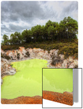 The Green Pool Metal Print by Trey Ratcliff