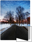 A Chilly Morning in Boston Common Metal Print by Trey Ratcliff