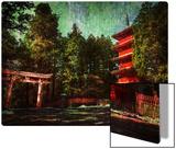 Ancient Nikko Metal Print by Trey Ratcliff