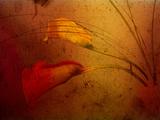 Callas Metal Print by Katherine Sanderson