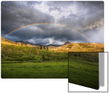 The Rainbow After the Storm Metal Print by Trey Ratcliff