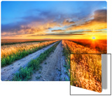 Long Road in Montana Metal Print by Trey Ratcliff