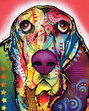 Basset Prints by Dean Russo