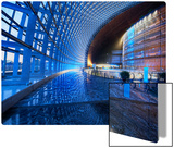 Inside The Egg Metal Print by Trey Ratcliff