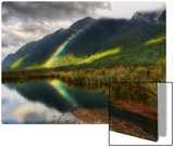 Deep in the South of New Zealand Metal Print by Trey Ratcliff
