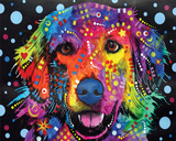Golden Retriever Poster by Dean Russo