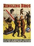 Ringling Bros, Poster, 1900 Metal Print