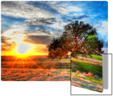 A Sunset on a Texas Farm Metal Print by Trey Ratcliff