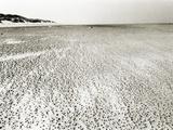 Baltrum Beach, no. 6 Metal Print by Katrin Adam