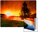 A view with my coffee Metal Print by Trey Ratcliff