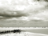 An Empty Expanse of Beach Metal Print by Katrin Adam