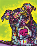Brindle Prints by Dean Russo