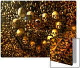 Heart of Skulls Metal Print by Trey Ratcliff