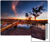 Another Sunset in Austin Metal Print by Trey Ratcliff