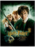 Harry Potter (Chamber Of Secrets) Movie Poster Masterprint